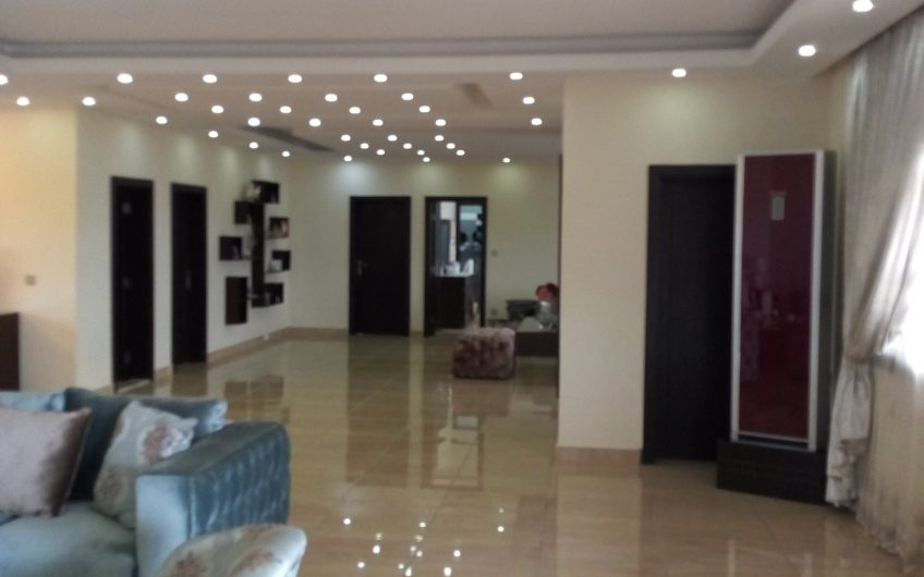 To Let: A Tastefully Finished commercial show rooms/storage on 3 floors with tastefully finished luxury 4bedroom flat and 3bedroom flat on the pent house, also a 2bay warehouse and a 3 bay warehouse all on a total land area of approximately 3,312.174sqm.